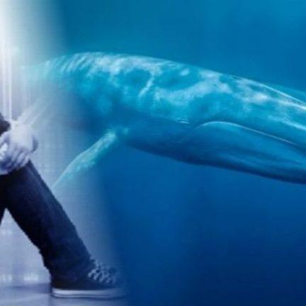 Não deixem as baleias matarem nossos jovens