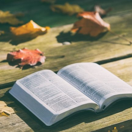 A Voz da Diocese da Alegria 210: Dom Paulo e o mês da Bíblia