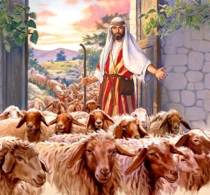 """""""Dar-vos-ei pastores segundo o meu coração, os quais vos apascentarão com inteligência e sabedoria"""" (Jr 3, 15)"""