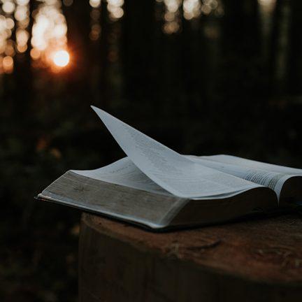 """Artigo: """"Não só de pão vive o homem, mas de toda a Palavra da boca de Deus"""""""