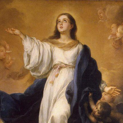 Dom Carlos: Assunção de Nossa Senhora: caminha como Maria, na Igreja