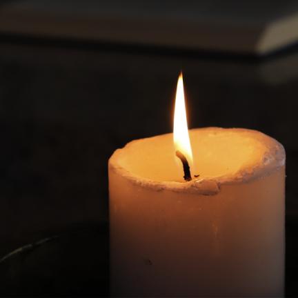 """Dom Carlos: Artigo: """"Esta era a luz verdadeira que, vindo ao mundo, a todos ilumina""""(Jo 1,9)"""