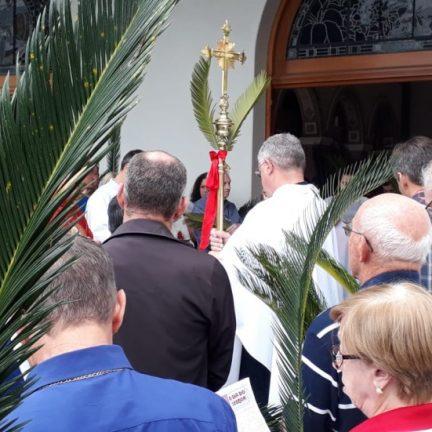 Catedral: Programação para o Domingo de Ramos