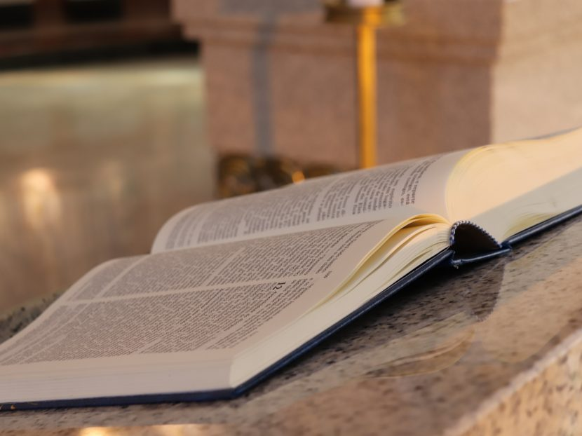 """Artigo: """" Transforma em fé viva o que leres"""""""
